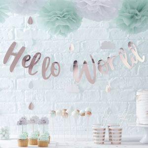 Hello World Baby Shower